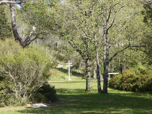 Blick in Gedenkstätte Vallon des Fusillés
