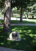 Gedenkbaum für Deportierte