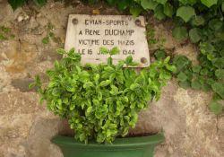 Tafel R. Duchamp