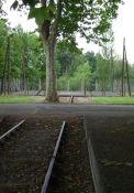 Denkmal Gleis – Stacheldraht (KZ)